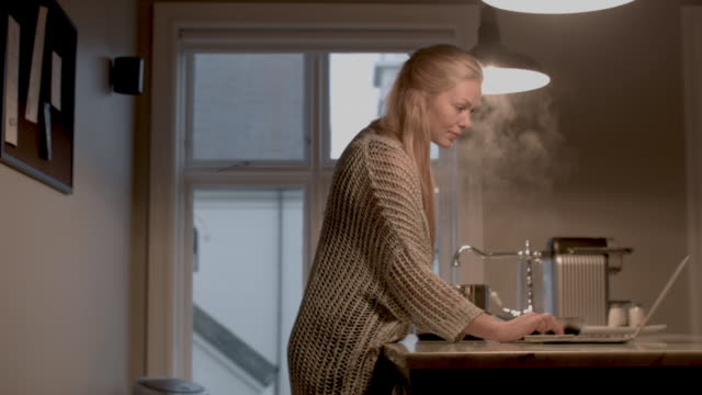 woman cooking dinner - back lit stock-videos und b-roll-filmmaterial