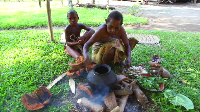 woman cooking sago. - papua new guinea stock videos & royalty-free footage