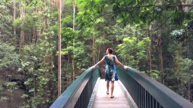 woman crossing a bridge in rain forest in queensland australia - whole stock videos & royalty-free footage
