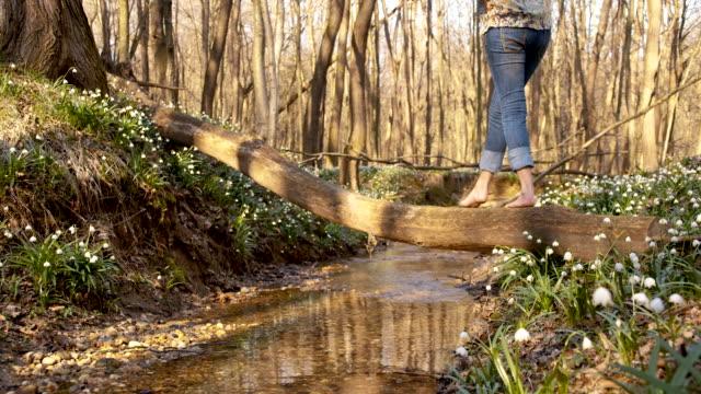 DS Frau überqueren eine creek im Frühjahr Wald