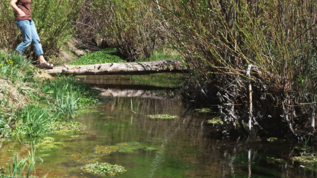 woman crossing a stream on a log bridge
