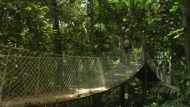 vídeos de stock e filmes b-roll de ws, woman crossing canopy walk in jungle, manaus, brazil - ponte suspensa