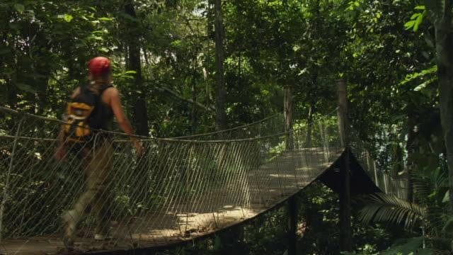 WS, Woman crossing canopy walk in jungle, rear view, Manaus, Brazil