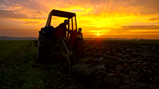 slo mo woman cultivating land at sunset - traktor bildbanksvideor och videomaterial från bakom kulisserna