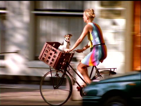 woman cycling along street with dog in basket, amsterdam - 籠点の映像素材/bロール