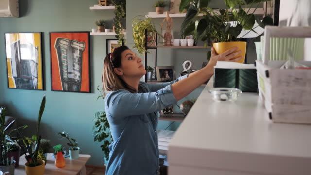 vídeos de stock, filmes e b-roll de mulher decora espaço de convivência com plantas domésticas - atividade recreativa