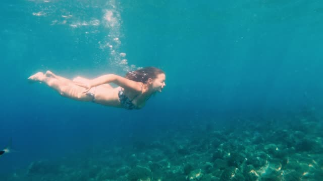 woman diving in the sea watching coral reef and tropical fish - sea life stock videos & royalty-free footage