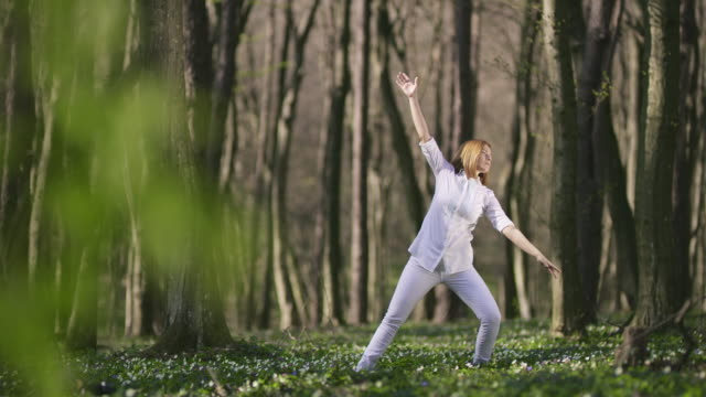 vídeos de stock e filmes b-roll de ds woman doing tai chi in the forest - artes marciais