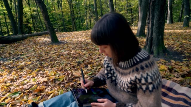 woman drawing in forest in autumn - illustrator stock videos & royalty-free footage
