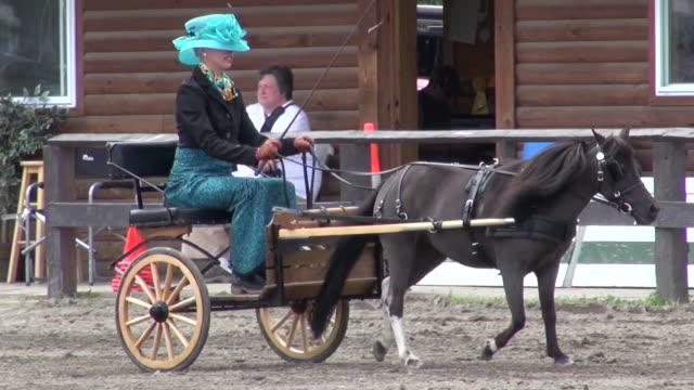 a woman dressed in upscale attire riding in a horse drawn carriage - hästkärra bildbanksvideor och videomaterial från bakom kulisserna