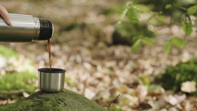 woman drinking coffee in the forest - coffee drink stock videos & royalty-free footage