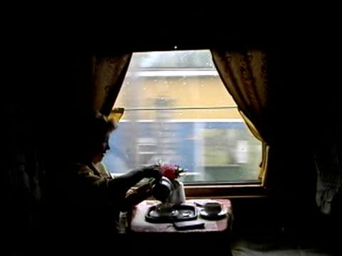 woman drinking tea on trans-siberian railroad - bricco per il caffè video stock e b–roll