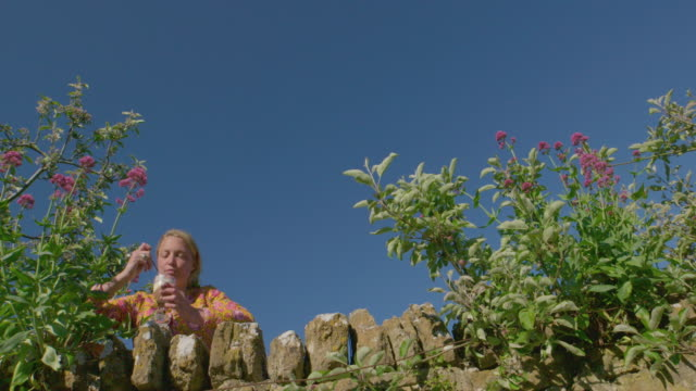 vídeos de stock e filmes b-roll de woman eating dessert in garden - só mulheres jovens