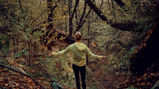 woman embracing nature. rainy, autumnal forest - meditating stock videos & royalty-free footage