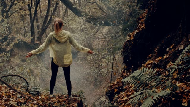 woman embracing nature. rainy, autumnal forest - waterproof clothing stock videos and b-roll footage