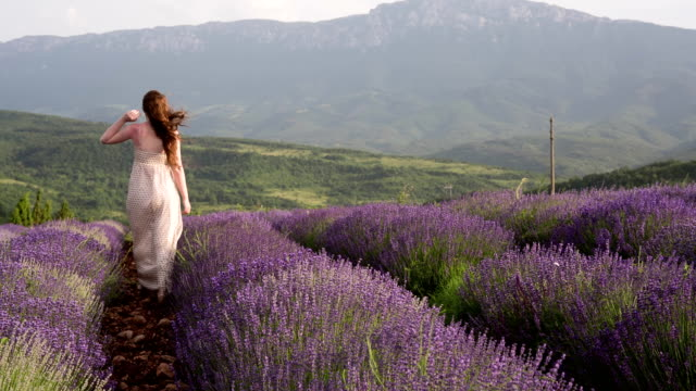 Woman Enjoying A Walk Through Scented Fields Of Purple Lavender