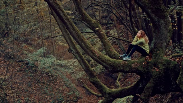 Woman enjoying autumn. Sitting on a branch, admiring colorful leaves