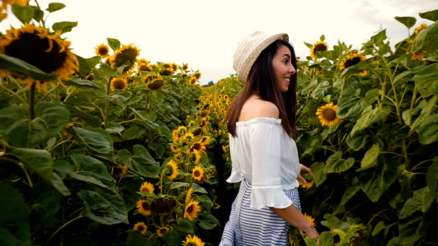woman enjoys in sunflower field - brown hair stock videos & royalty-free footage