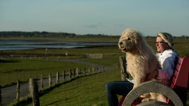 A woman enjoys the walk along the Wadden Sea with her pedigree dog.