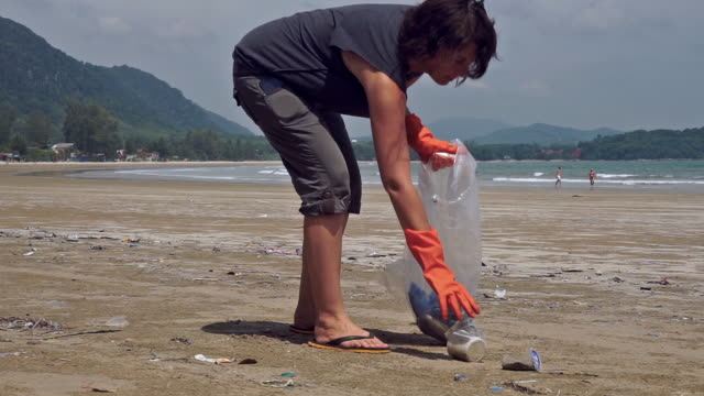 woman environmentalist volunteer on beach cleanup of plastic pollution - tree hugging stock videos & royalty-free footage