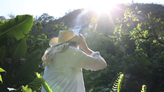 woman explores jungle waterfall,  sunburst behind - 腰に手を当てる点の映像素材/bロール