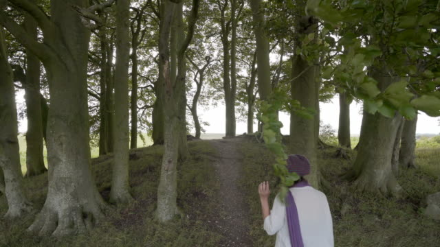 a woman explores the avebury barrows at overton hill - avebury stock videos & royalty-free footage