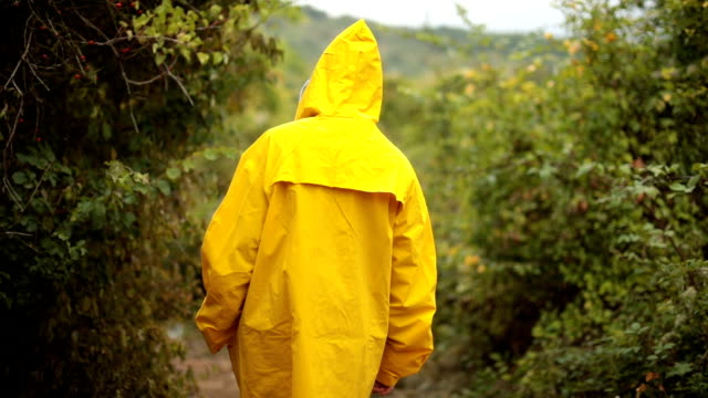 woman exploring nature on rainy day - raincoat stock videos & royalty-free footage