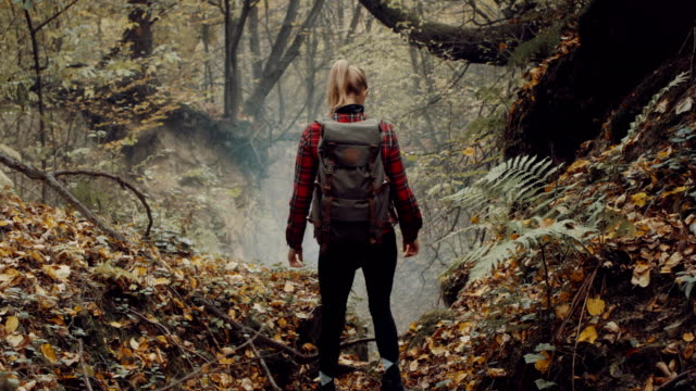 Woman exploring wilderness area. Autumnal forest