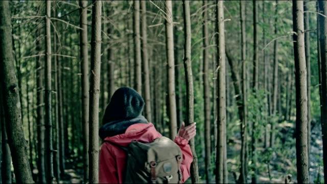 woman exploring wilderness area. mountainous landscape - wilderness area stock videos & royalty-free footage