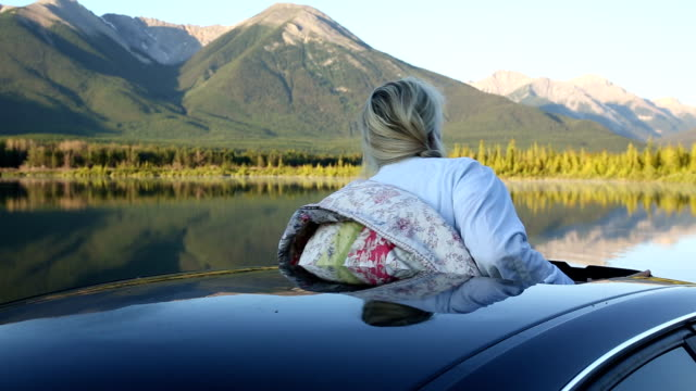 Woman extends arm out of car window in mountain meadow