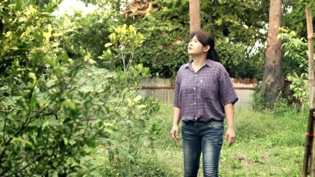 woman farmer walking in farm looking lemon tree