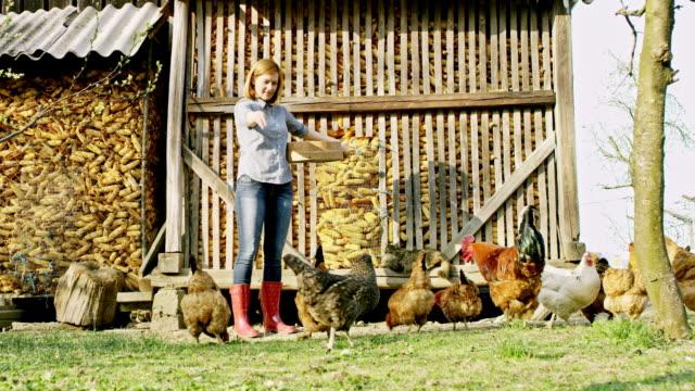 WS kvinna utfodring höns på en liten gård