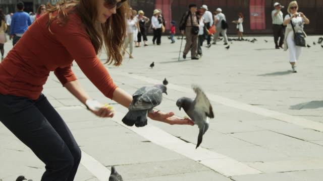 slo mo ms tu woman feeding pigeons on st. mark's square / venice - venedig stock-videos und b-roll-filmmaterial