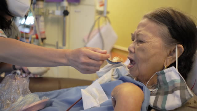 woman feeding senior woman patient in the hospital - medical building stock videos & royalty-free footage
