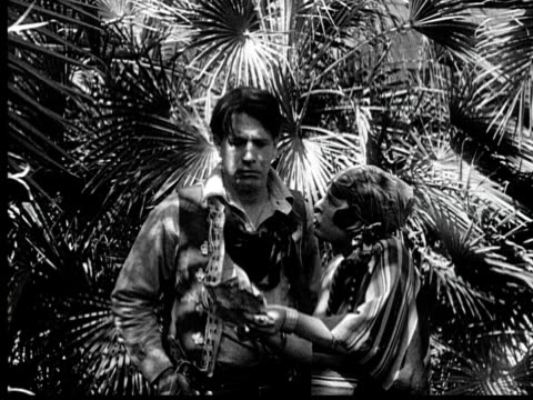 b/w 1920 ms woman fighting with man in garden - fan palm tree stock videos & royalty-free footage