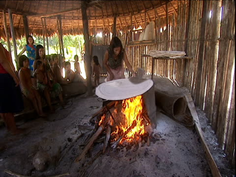 Woman flattens sieved ground cassava root cooking on hotplate above wood fire Amazon Rainforest Venezuela