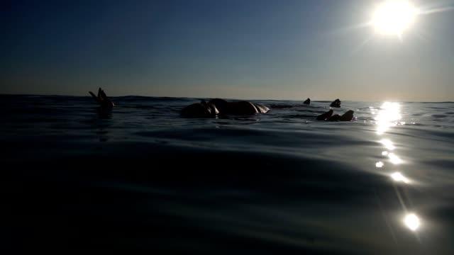 vidéos et rushes de woman floating in sea. - flotter sur l'eau