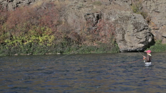 a woman fly fisher fishes on the snake river in idaho on a sunny, fall day - スネーク川点の映像素材/bロール