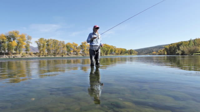 A woman fly fisher fishes on the Snake River in Idaho on a sunny, fall day