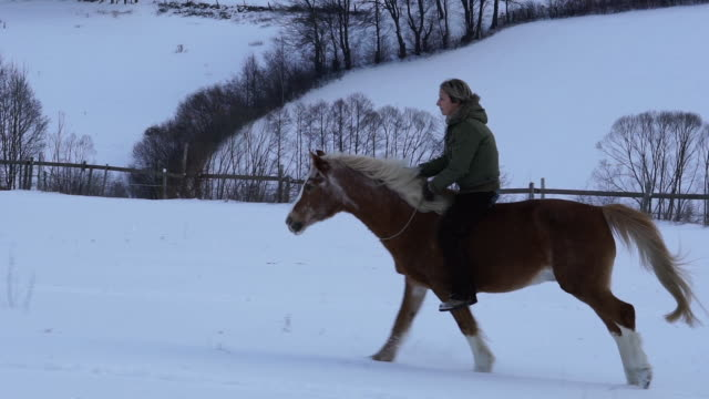 woman galloping free on horse in snow slow motion - bridle stock videos & royalty-free footage