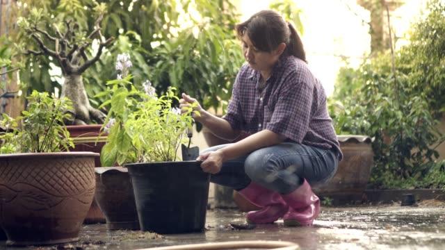 woman gardening digging tree pot water drop raining