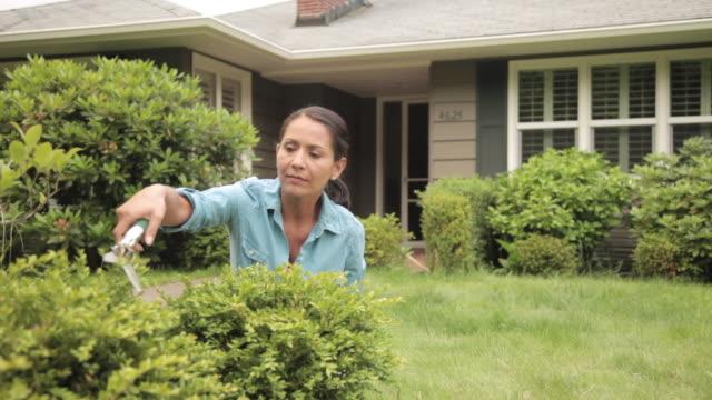 ms woman gardening / portland, oregon, united states - pruning shears stock videos & royalty-free footage