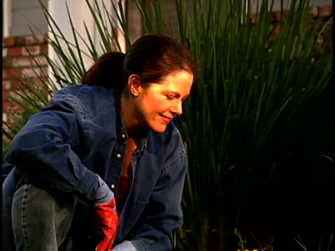 woman gardening - one mature woman only stock videos & royalty-free footage