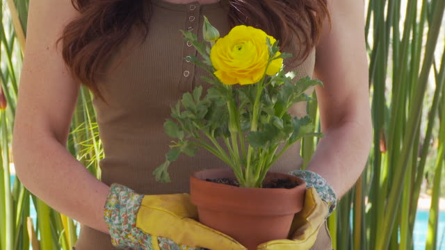 woman gardening - gardening glove stock videos & royalty-free footage