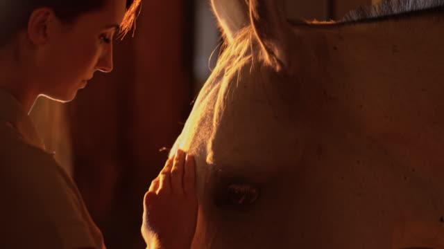 slo mo 女性ギブ料理を彼女の馬の安定性 - 厩舎点の映像素材/bロール
