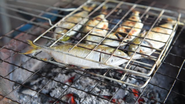 woman hand grilled mackerel fish on stove,thailand street food - home guard britannica video stock e b–roll