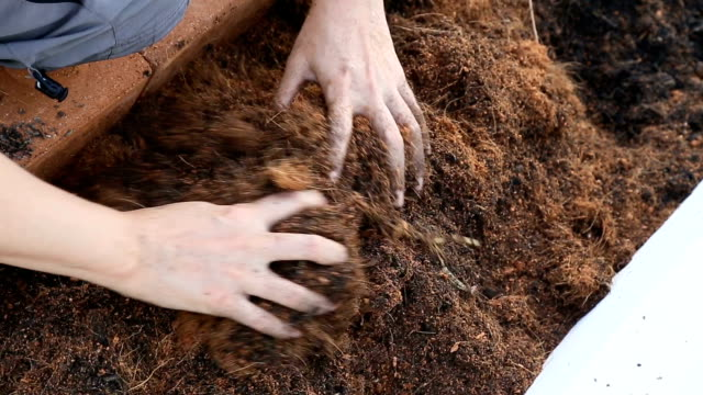 Woman hand preparing garden soil for planting.
