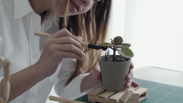 Frau Hände Bepflanzung kleinen Blumentopf