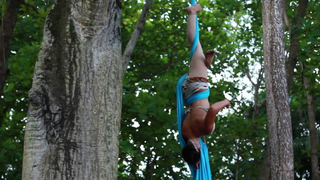 ms ts woman hangs from trees holding onto fabric while doing  splits and climbs up fabric, spins and performs gymnastics amongst large trees in  tropical environment / montezuma, puntarenas, costa rica - puntarenas stock-videos und b-roll-filmmaterial