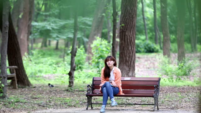 a woman have a seat at the seolleung(tomb of the joseon dynasty king) park in seoul city - 全身点の映像素材/bロール